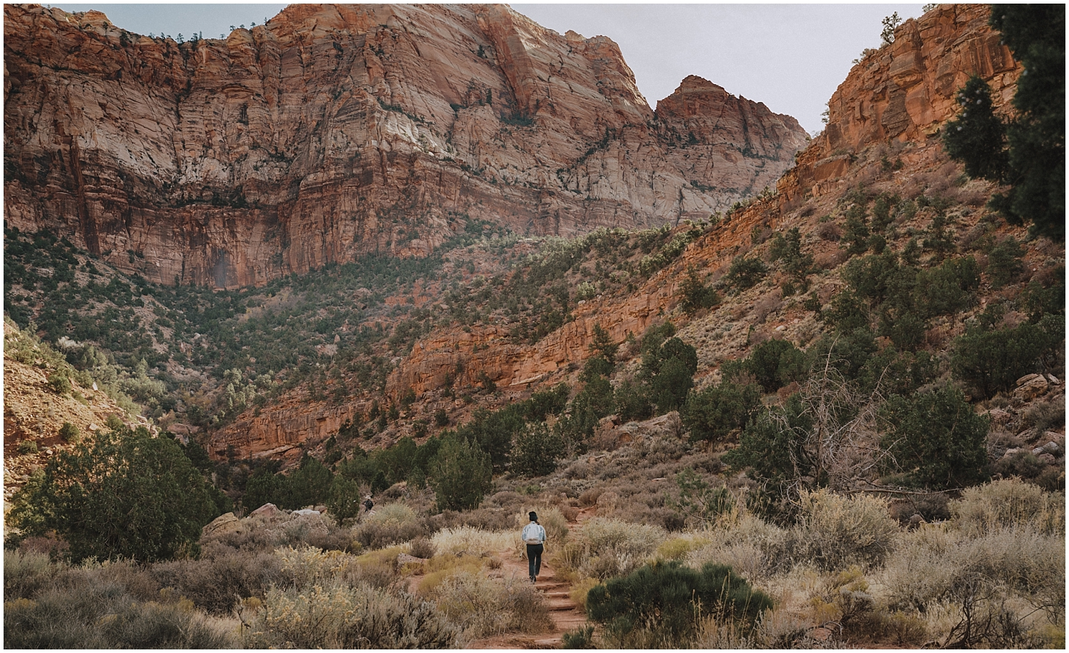 Person walking through Zion National Park